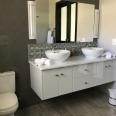 double vanity and loo Pan