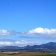 the rolling hills of the Overberg