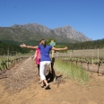 frolicking in the vineyards